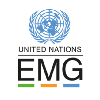 UN Environment Management Group